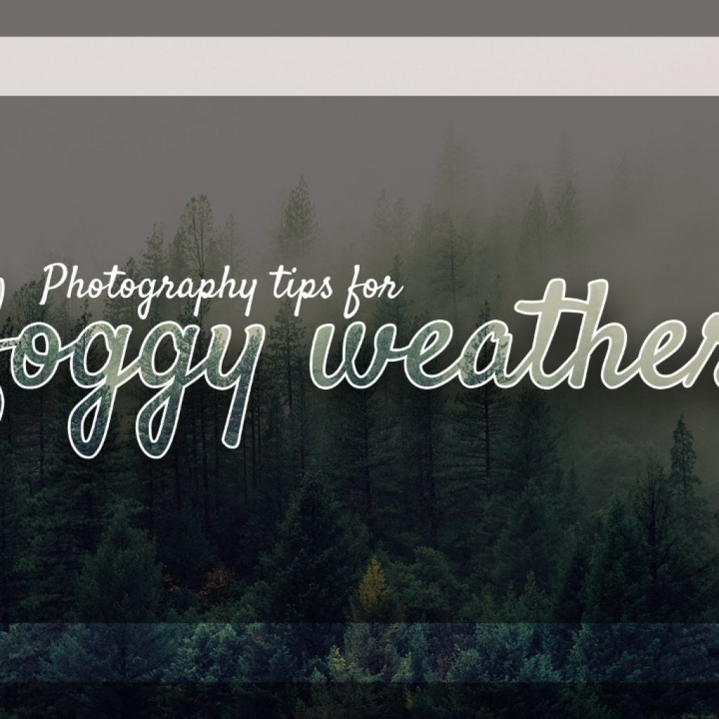 Photography tips for foggy weather
