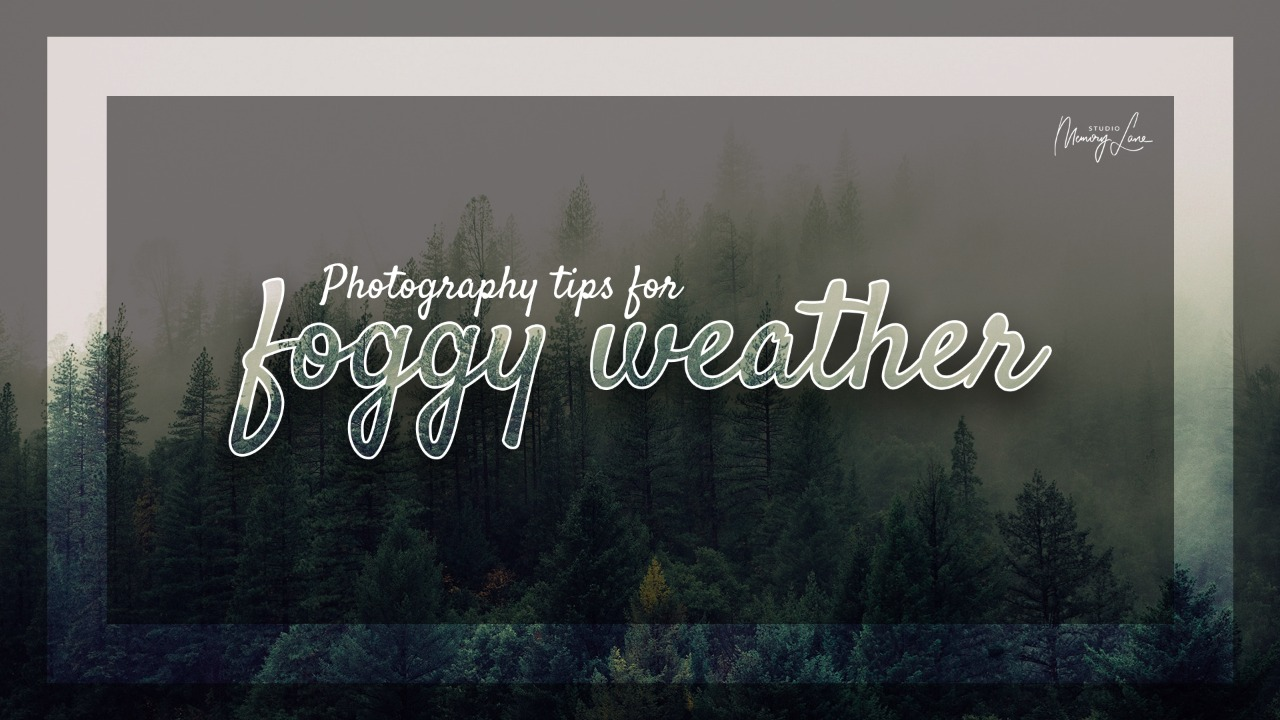Photography tips for foggy weather!